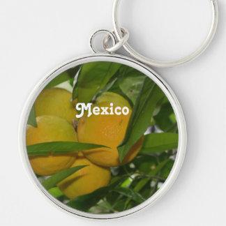 Pomelo de México Llaveros