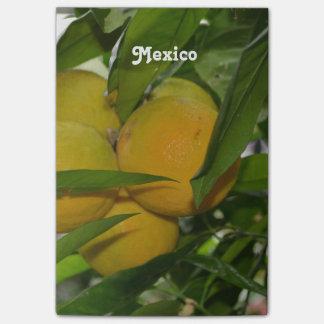 Pomelo de México Notas Post-it