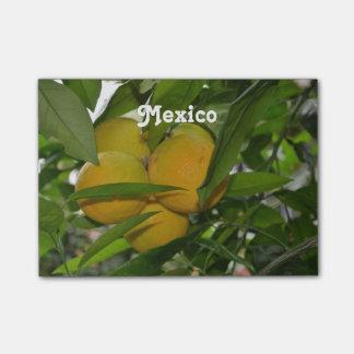 Pomelo de México Post-it Nota