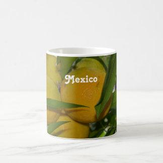 Pomelo de México Taza