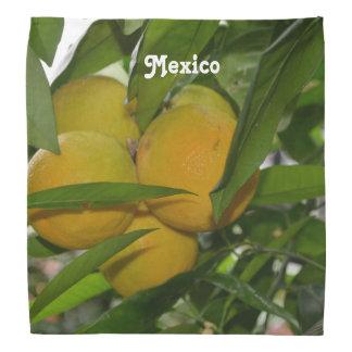 Pomelo de México Bandanas