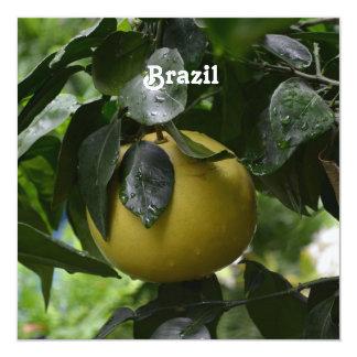 """Pomelo del Brasil Invitación 5.25"""" X 5.25"""""""