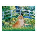Pomeranian 3 - Bridge Post Card
