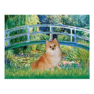 Pomeranian 3 - Bridge Postcard