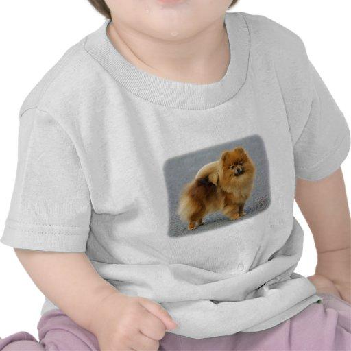 Pomeranian 9R042D-22 T Shirt