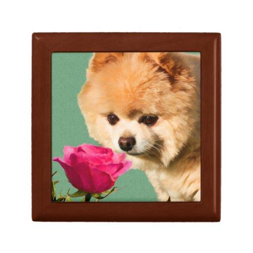 Pomeranian and Rose Gift Box