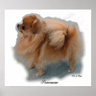 Pomeranian Art Prints