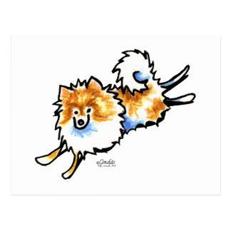 Pomeranian blanco anaranjado lindo tarjeta postal