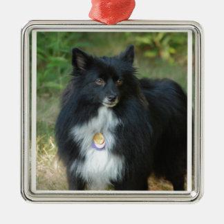 Pomeranian blanco y negro ornamento para arbol de navidad