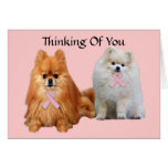 Pomeranian Breast Cancer Greeting Card