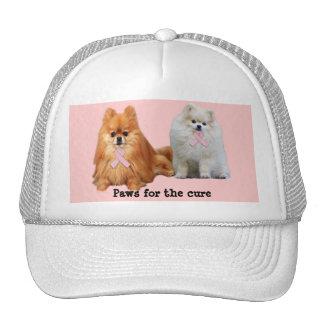 Pomeranian Breast Cancer Hat