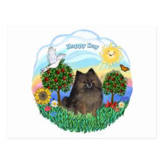 Pomeranian (brindle) postcard