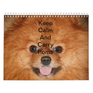 Pomeranian Office School Products Zazzle