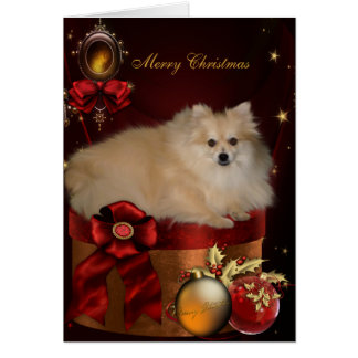 Pomeranian Christmas Greeting Card