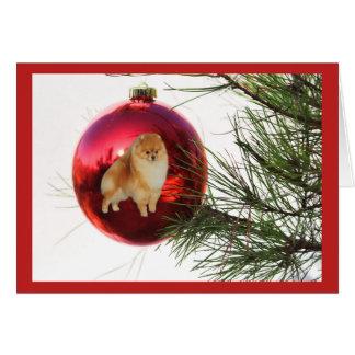 Pomeranian  Christmas Card Red Ball