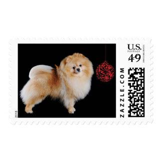 Pomeranian Christmas Postage Stamps
