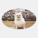 Pomeranian - cuello de la vanidad de Abby Calcomanías De Ovales Personalizadas