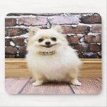Pomeranian - cuello de la vanidad de Abby Alfombrilla De Ratones