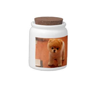 Pomeranian-cute puppies-spitz-pom dog-pom puppies candy jars