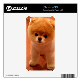 Pomeranian-cute puppies-spitz-pom dog-pom puppies decals for iPhone 4S