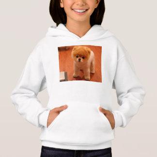 Pomeranian-cute puppies-spitz-pom dog-pom puppies hoodie
