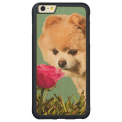 Carved iPhone 6 Plus Slim Wood Case with Pomeranian Phone Cases design