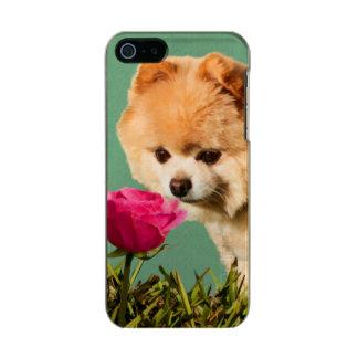 Pomeranian Dog and Rose Incipio Feather® Shine iPhone 5 Case