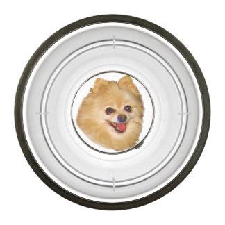 Pomeranian Dog Customizable Bowl