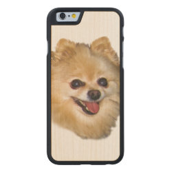 Carved ® iPhone 6 Bumper Wood Case with Pomeranian Phone Cases design