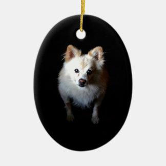 Pomeranian Dog in Dark Ceramic Ornament