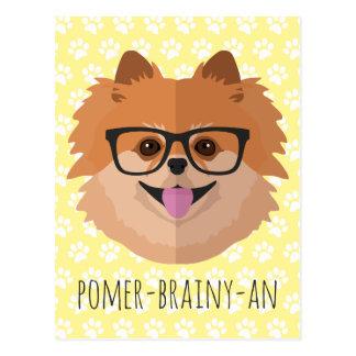 Pomeranian Dog In Nerd Glasses   POMER-BRAINY-AN Postcard