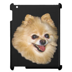 Case Savvy Glossy Finish iPad Case with Pomeranian Phone Cases design