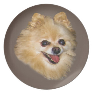 Pomeranian Dog on Brown Plate