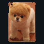 "Pomeranian Dog Pet Puppy Small Adorable baby iPad Mini Cover<br><div class=""desc"">Pomeranian Dog Pet Puppy Small Adorable baby</div>"
