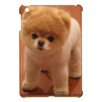 Pomeranian Dog Pet Puppy Small Adorable baby iPad Mini Cover