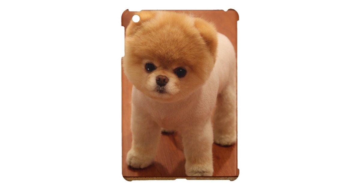 Pomeranian Dog Pet Puppy Small Adorable Baby Ipad Mini Cover Zazzle Com