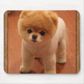 Pomeranian Dog Pet Puppy Small Adorable baby Mouse Pad