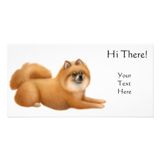 Pomeranian Dog Photo Card