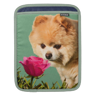 Pomeranian Dog Smelling Red Rose Sleeve For iPads