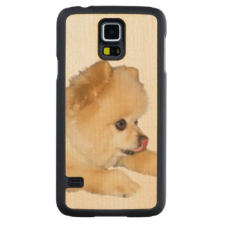 Pomeranian Dog Sticking Tongue Out Carved Maple Galaxy S5 Slim Case