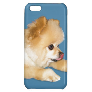 Pomeranian Dog Sticking Tongue Out Case For iPhone 5C