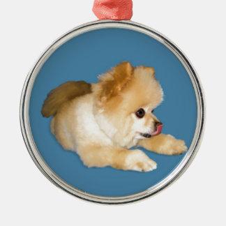 Pomeranian Dog Sticking Tongue Out Round Metal Christmas Ornament