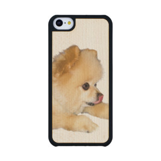 Pomeranian Dog Sticking Tongue Out Carved® Maple iPhone 5C Case