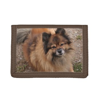 Pomeranian Dog Trifold Wallets by Artnmore at Zazzle