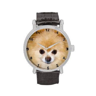 Pomeranian Dog Wristwatches