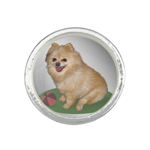 Pomeranian Dog with Ball Customizable Photo Rings