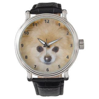 Pomeranian Dog Wristwatch