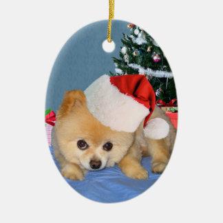 Pomeranian en el ornamento del gorra de Santa Ornaments Para Arbol De Navidad