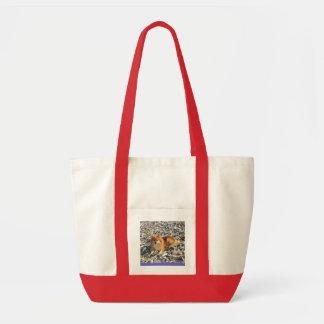 Pomeranian en la playa bolsas de mano