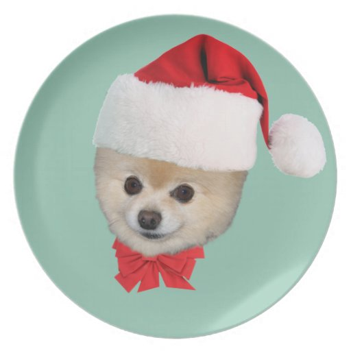 Pomeranian en placa del gorra de Santa Platos De Comidas